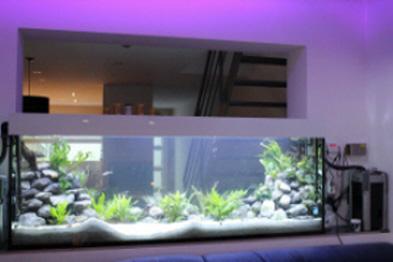 Goedkoop Aquarium Terrarium  Get cheap fishtank aliexpress alibaba group