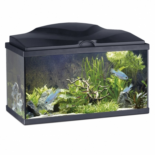 ciano aquarium 60 bio zwart wit. Black Bedroom Furniture Sets. Home Design Ideas